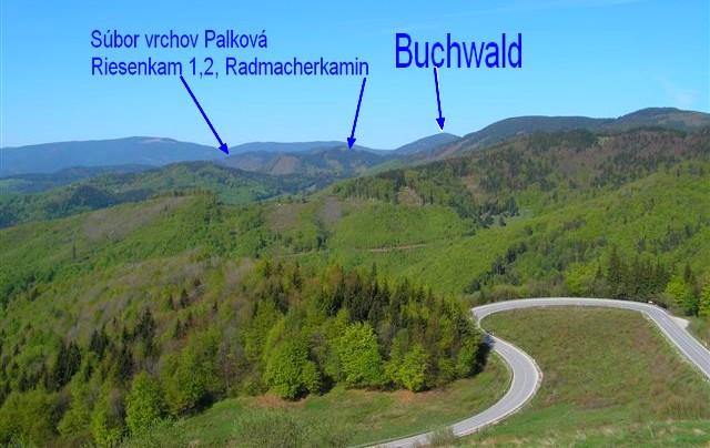 Buchwald, Palková