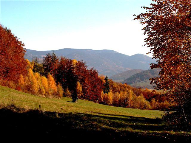Zlatistá jeseň