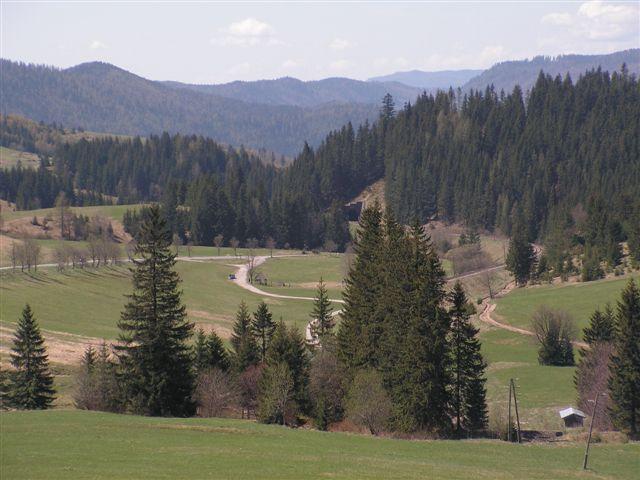 Pohľad z Besníka smerom na údolie Hrona a jeho prameň