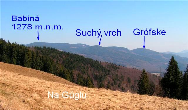 Z Gúgla pohľad na Babinú a Suchý vrch