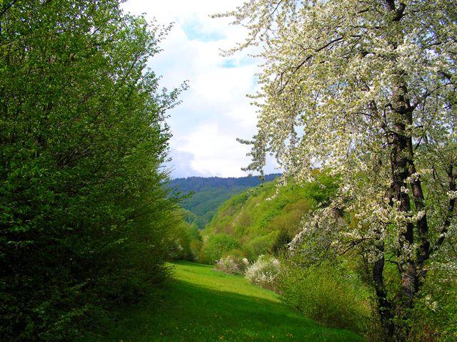 V údolí Grindla smerom na Štempelšájer